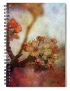 Pear Blossom Sunset 8930 Idp_2 Spiral Notebook