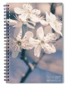 Pear Blossoms 4 Spiral Notebook