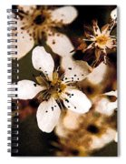 Pear Tree Blossoms Spiral Notebook