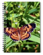 Pearl Crescent Butterfly Spiral Notebook