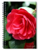 Pearl Of Beauty - Red Camellia Spiral Notebook