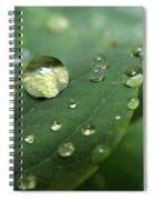 Pearls On Leaf 5 Spiral Notebook