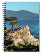 Pebble Beach Iconic Tree With Sun Light At Dusk Spiral Notebook