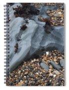 Pebble Beach Rocks 8715 Spiral Notebook