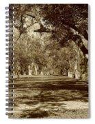 Pecan Heaven Spiral Notebook