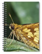 Peck's Skipper Spiral Notebook