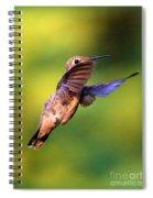 Peek-a-boo Hummingbird Spiral Notebook