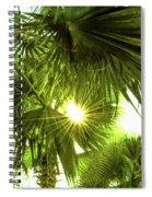 Peek A Boo Spiral Notebook