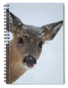Peek A Doe Spiral Notebook