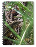 Peekaboo Lizard Spiral Notebook