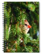 Peeking From The Pines Spiral Notebook