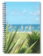 Peeking Sea Spiral Notebook