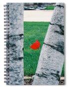 Peeking Tulip Spiral Notebook