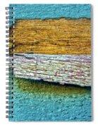 Peeling Paint Bird Spiral Notebook