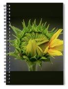 Peep Spiral Notebook