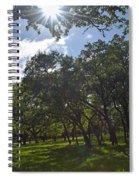 Peeping Sun Spiral Notebook