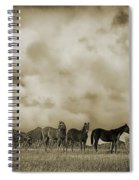 Peeples Valley Horses In Sepia Spiral Notebook