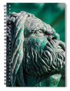 Peering Beyond The Waves Spiral Notebook