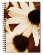 Peering Over Spiral Notebook