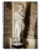 Peering Woman Spiral Notebook
