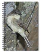 Peewee Spiral Notebook