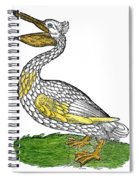 Pelican, 1560 Spiral Notebook