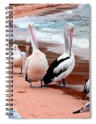 Pelican 5.0 Pearl Beach Spiral Notebook