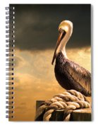 Pelican After A Storm Spiral Notebook