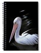 Pelican At Dusk Spiral Notebook