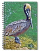 Pelican By The Pier Spiral Notebook