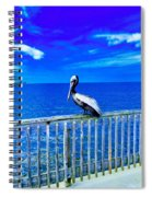 Pelican Spiral Notebook