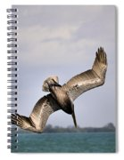 Pelican Diving For Dinner Spiral Notebook