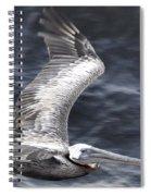 Pelican Flight Spiral Notebook