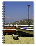 Pelican In Mykonos Spiral Notebook