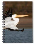 Pelican Lift Off Spiral Notebook