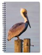 Pelican Perch Spiral Notebook