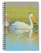 Pelican Plus One Spiral Notebook