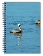Pelican Racers Spiral Notebook