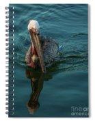 Pelican Reflection Spiral Notebook