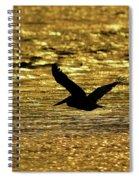 Pelican Silhouette - Golden Gulf Spiral Notebook