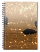 Pelican Sunrise Spiral Notebook