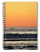 Pelican Sunset Spiral Notebook