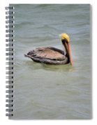 Pelican Swimming  Spiral Notebook