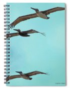 Pelican Trio Spiral Notebook