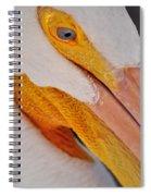 Pelican Twist Spiral Notebook