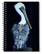 Pelican Spiral Notebook
