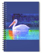 Pelican With Blue Spiral Notebook