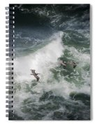 Pelicans And Surf Spiral Notebook