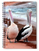 Pelicans At Pearl Beach 5.2 Spiral Notebook
