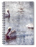 Pelicans At Rest Spiral Notebook
